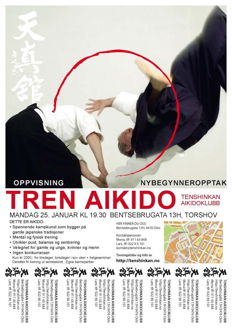 Aikido nybegynnerkurs